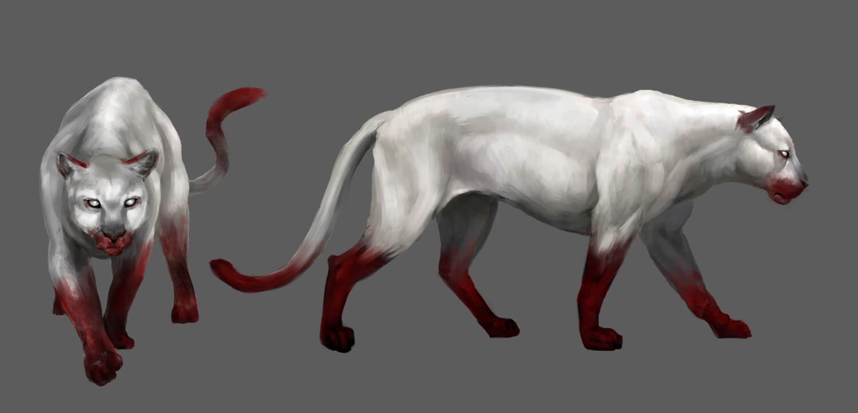 Wild Pet Cougar