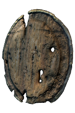 Rotted Round Shield