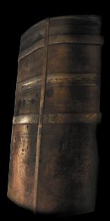 Buckskin Tower Shield
