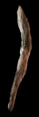 Driftwood Club