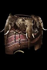 The Beast Fur Shawl